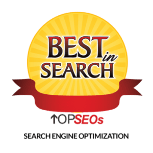 Top SEOs Search Engine Optimization